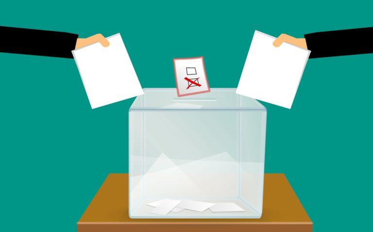 voting behaviour in india