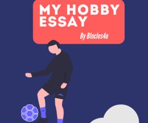 my hobby essay in english