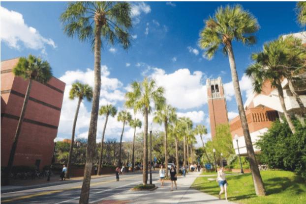 University of Florida Tuition